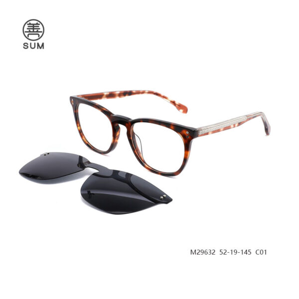 Clip On Eyewear M29632 C01