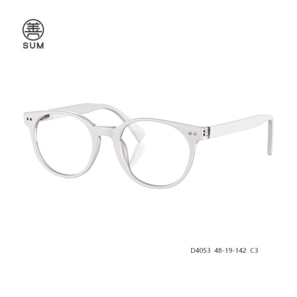 Hot Selling Optical Frames D4053 C3