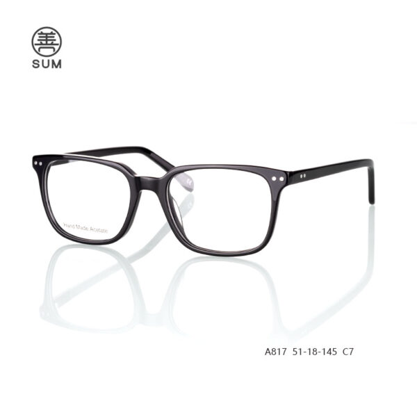 Thin Acetate Optical Frames For Men A817 C7